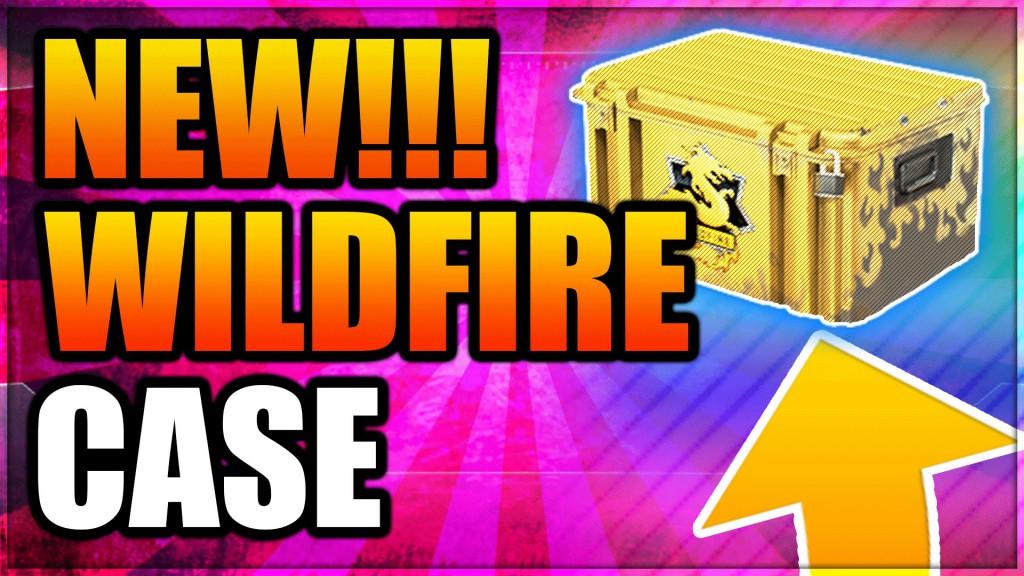 Кейс WildFire