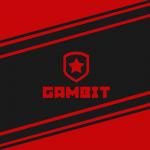 Gambit Gaming нашли пятого игрока