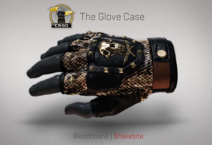 bloodhound-snakebite