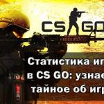 Статистика игроков в CS GO: узнаем всё тайное об игроках