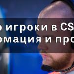 Про игроки в CS GO: информация и профили