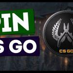 Значки в CS GO: какие и как собирать